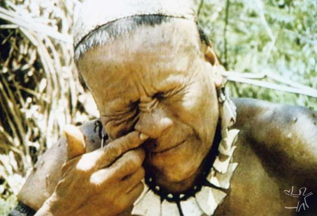 Kunibu aspirando pó de angico. Foto: Adelino de Lucena Mendes, 2002.