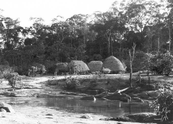 Vista parcial da aldeia Likirekiclepau, no rio Citaré. O local estava sendo abondonado depois da morte de seu chefe. Foto: Daniel Schoepf, 1972