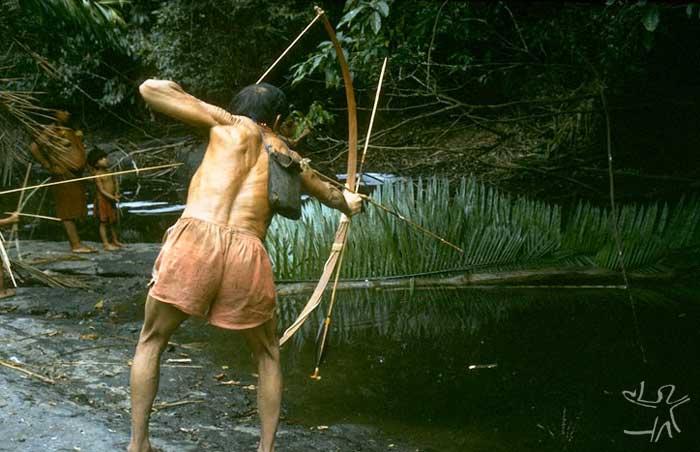 Tiwawi-no flechando um trairão. Foto: Eduardo Viveiros de Castro, 1991