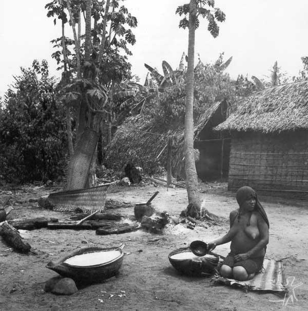 Mastigação de Cauim de milho (Mitähi). Foto: Eduardo Viveiros de Castro, 1982.