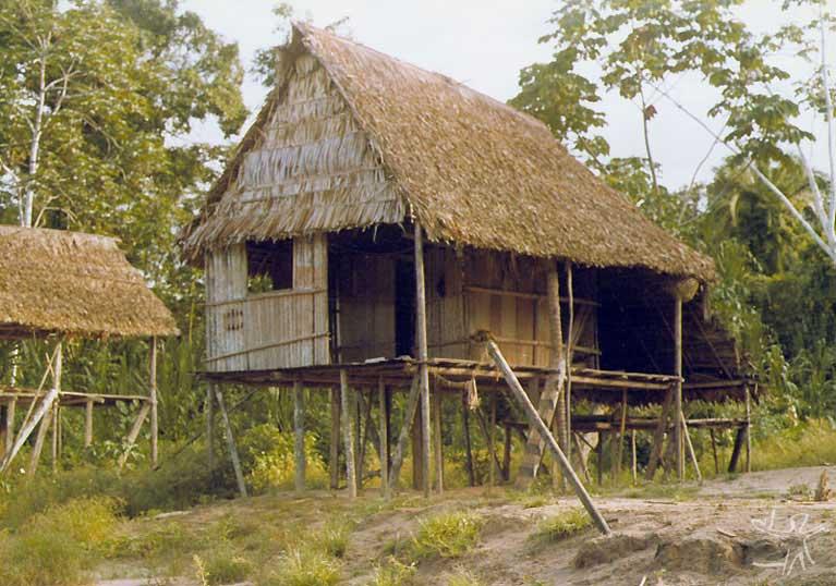 Habitação ashaninka no alto Juruá. Foto: Arno Vogel, 1978.