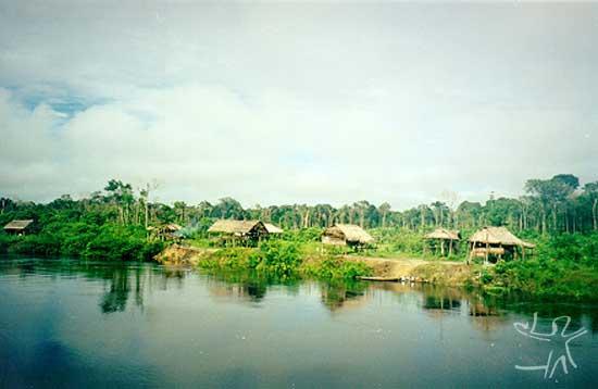 Vista parcial da aldeia Visagem, localizada à margem direita do rio Cuniuá. Foto: Rodrigo Padua Rodrigues Chaves, 1999.