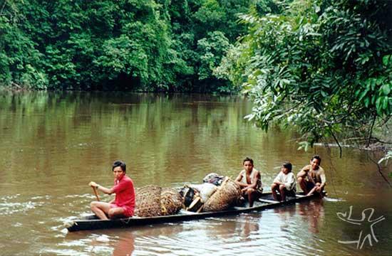 Índios Deni levam produtos da floresta para vender na cidade de Itamarati. Foto: Rodrigo Padua Rodrigues Chaves, 1999.