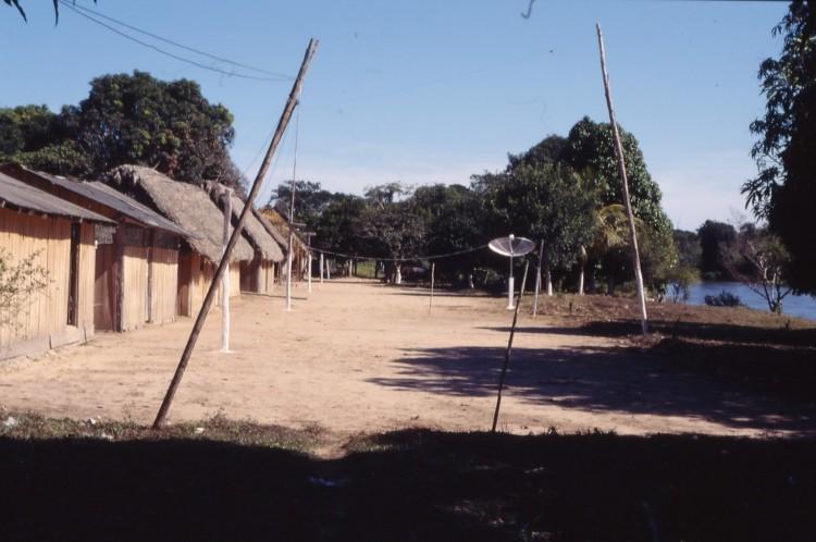 Cajuí no Rio Branco. Foto: Hein van der Voort, 2001