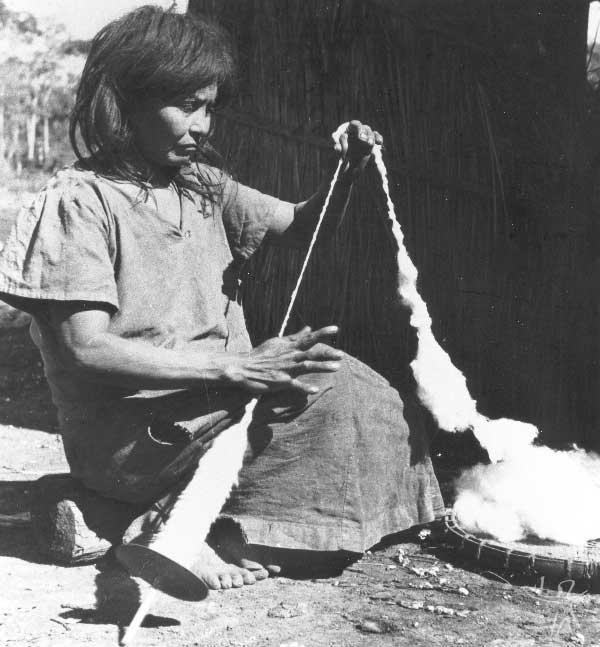 Mulher kaiowa fiando algodão. Foto: Egon Shaden, 1949.