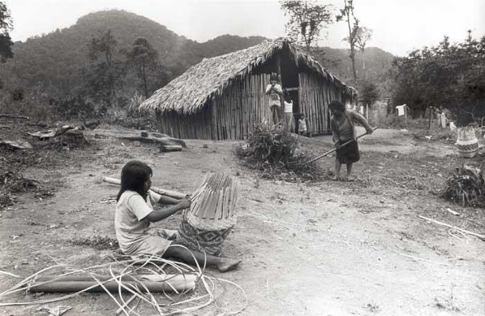 Comunidade Guarani Mbyá de Bracuí, em Angra dos Reis (RJ). Foto: Milton Guran, 1988.