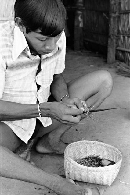 Índio Gavião tecendo cabelo de porco para enfeitar flecha, Terra Indígena Igarapé Lourdes (RO). Foto: Lars Lovold, 1981.