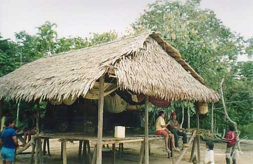 Habitação Jamamadi da aldeia Pauzinho (TI Jarawara Jamamadi Kanamanti). Foto: Peter Schröder/ PPTAL, 2000.