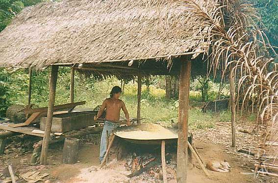 Torrando farinha na aldeia Casa Nova dos Jarawara. Foto: Peter Schröder, 2000/ PPTAL