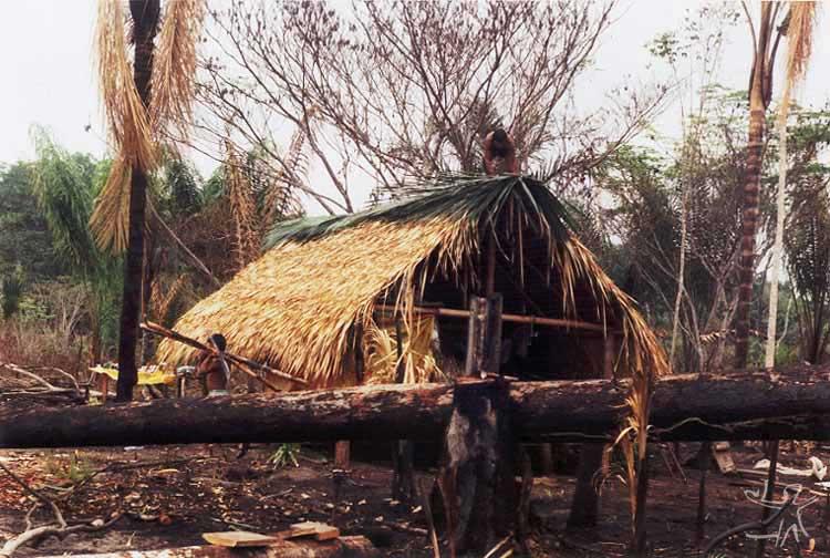 Aldeia Alto Jamary, TI Uru-eu-wau-wau, onde os Juma se encontram atualmente. Foto: Edmundo Peggion, 1999.
