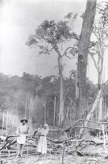 Família kaingang de Passo Fundo (RS). Foto: acervo Museu do Índio, 1922.