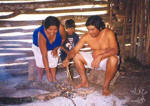 Família kaingang fazendo fogo de chão na TI Apucaraninha (PR). Foto: Kimiye Tommasino, 1999.