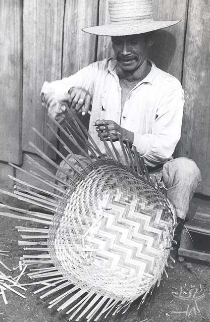 Homem kaingang do Ivaí (PR) fabricando uma cesto. Foto: Harold Shultz, 1946.