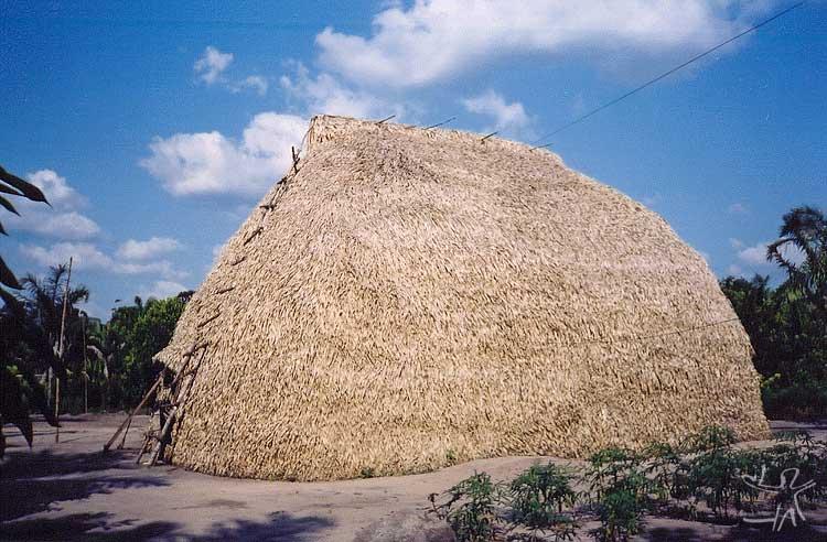 Casa karitiana na aldeia Kyõwã. Foto: Felipe Ferreira Vander Velden, 2003.