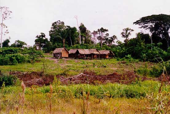 Um agrupamento residencial, TI do rio Campinas. Foto: Edilene Coffaci de Lima, 1998