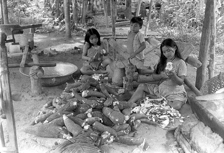 Meninas kaxinawá descascando a macaxeira. Foto: Paulo França , s/d.