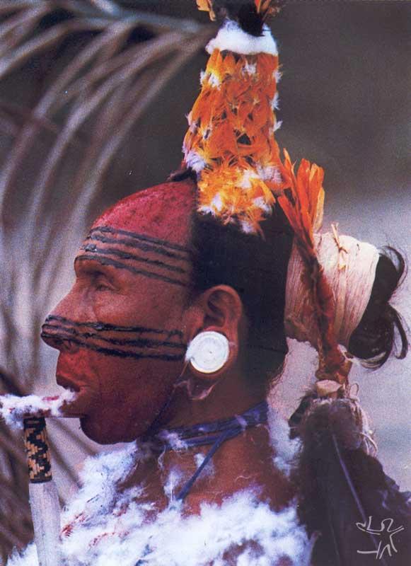 Rondó Suyá. Foto: Anthony Seeger, 1982.