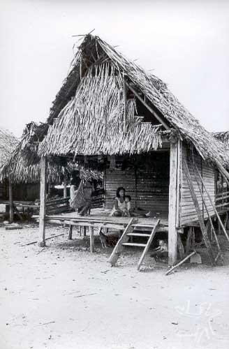 Casa na aldeia kulina de Santo Amaro, na nascente do rio Chaudess. Foto: Eduardo Viveiros de Castro, 1978.