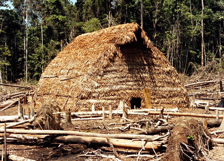 Maloca tradicional dos Matis. Igarapé Boeiro, rio Ituí. Terra Indígena Vale do Javari. Amazonas, 1985. Foto: Isaac Amorim Filho