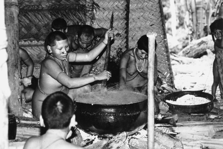 Índia Matis preparando bebida fermentada de milho. Terra Indígena Vale do Javari. Amazonas, 1985. Fonte: Philippe Eriks