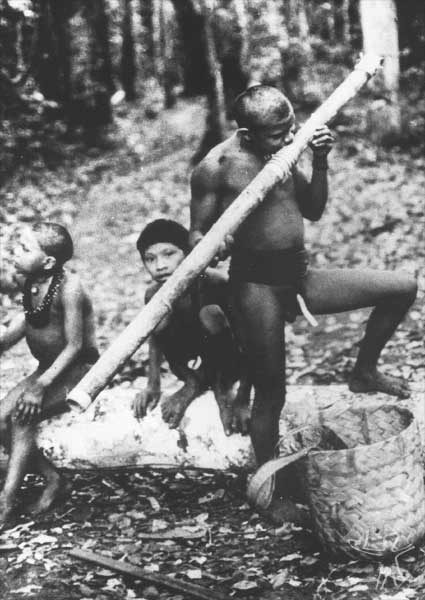 Flauta do Hoeyateim. Foto: Jesco von Puttkamer/acervo IGPHA-UCG, 1970.