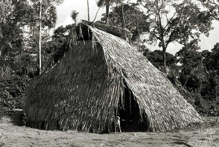 Habitação no Igarapé Lontra. Foto: Antônio Carlos Magalhães, 1975.