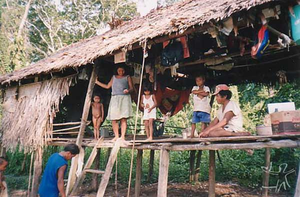 Habitação Paumari na aldeia Santa Rita (Paumari do Lago Marahã). Foto: Peter Schröder/PPTAL , 2000