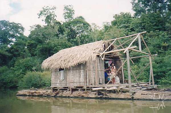 Flutuantes na aldeia Estirão no Lago Marahã (Paumari do Lago Marahã). Foto: Peter Schröder/PPTAL, 2000