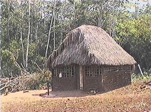 Um dos tipos de casa sakurabiat. Foto: Ana Vilacy Galucio, 2002.