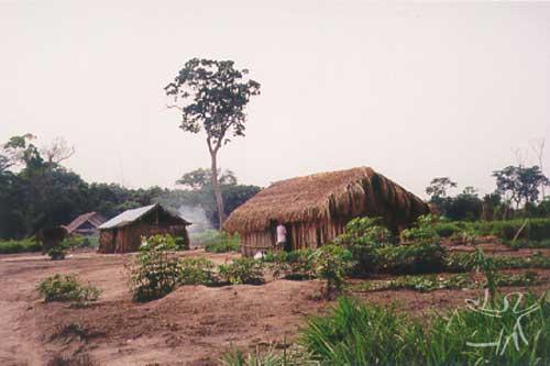 Vista parcial de uma das aldeias. Foto: Ana Vilacy Galucio, 2002.