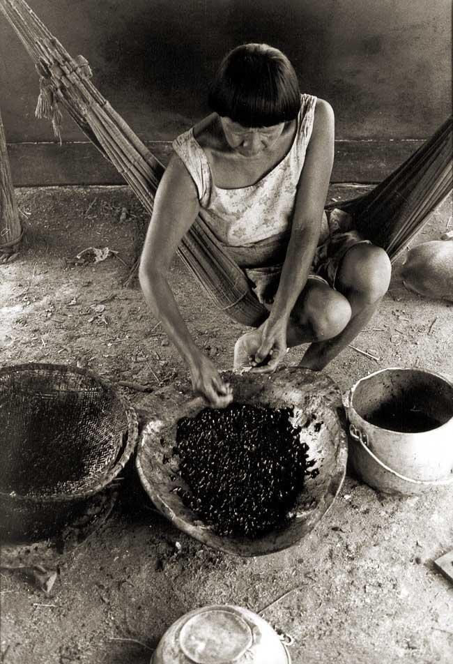 Mulher limpando girinos que comem no início das chuvas. A variedade do sapo é Ami'a. Foto: Antônio Carlos Moura, s/d.