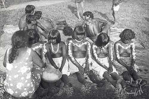Jovens iniciadas na festa wihaohawo (festa da moça ou festa do moqueado),realizada durante a visita dos Tembé do Guamá ao Gurupi. Foto: Virgínia Valadão,1983