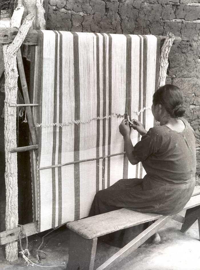Tecelã terena. Foto: Harold Schultz, 1942.