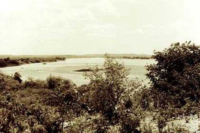 Rio São Francisco e caatinga. Foto: Ugo Maia, 2001