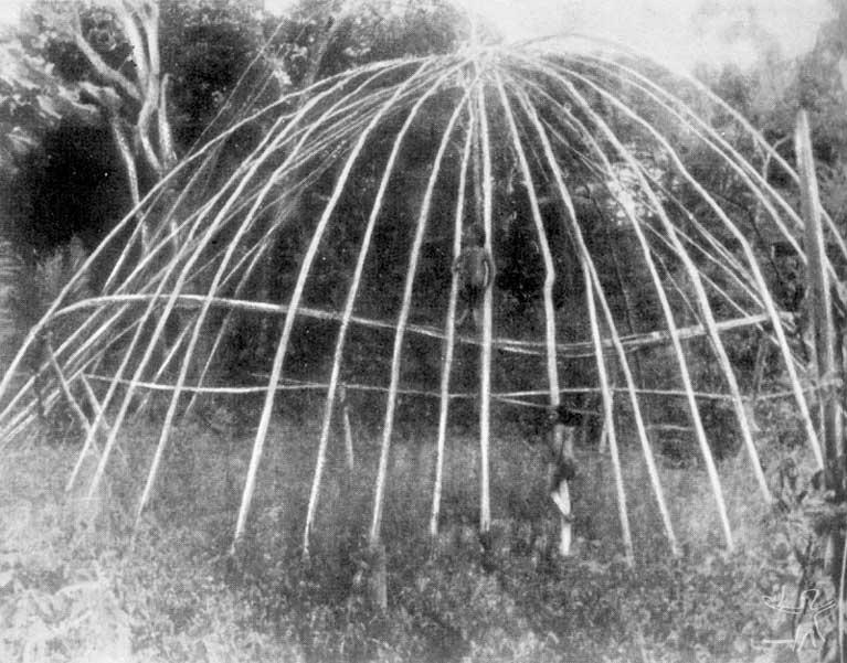 Armação de uma antiga maloca tupari. Foto: Franz Caspar, 1948