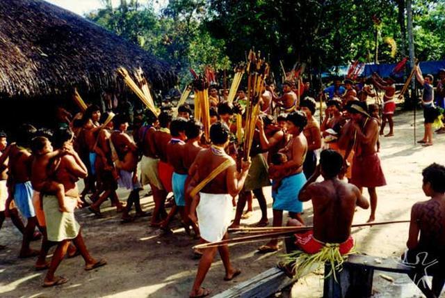 Aparador Em Ingles ~ Imagens> Povos Indígenas no Brasil