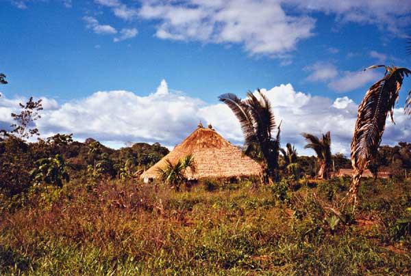 Umana (casa coletiva) da comunidade Waiwai do Jatapuzinho (RR). Foto: Evelyn Schuler, 2002.