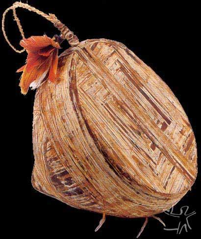 Tambor (towa). Argila revestida com caucho (towa) de seringueira. Instrumento musical de percussão. Foto: Aparecida Vilaça, 1995