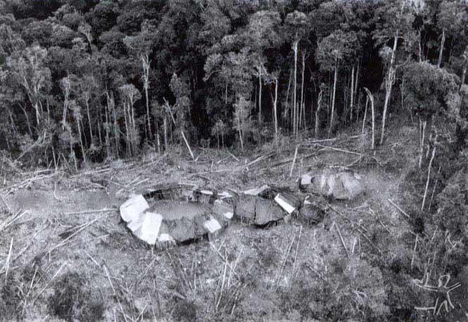 Maloca do Hemosh, região do Alto Rio Mucajaí (RR). Foto: Charles Vincent, Arquivo ISA/1990.