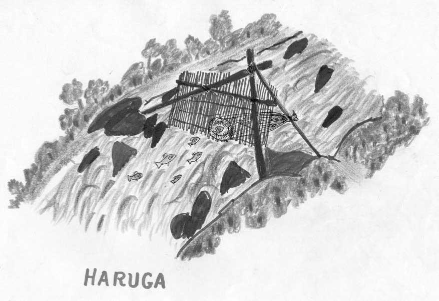 Manejo dos rios. Produção da Escola Tuyuka. Desenho: Higino Meira, 2000.