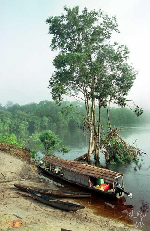 Às margens do Rio Xié. Foto: Paulo Santos/Interfoto, 2000.