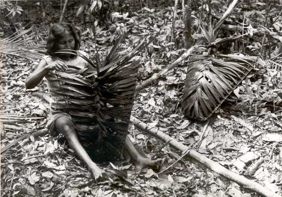Kulina Indigenous Peoples In Brazil