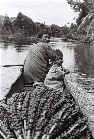 Levando açaí dentro do pödak (canoa de casca de Jatoba ou Violeta), na aldeia Boca do Bia. Foto: Jeremy Deturche, 2006.