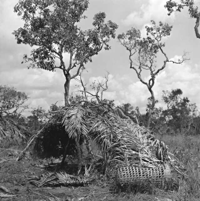 Habitação dos índios Nambikwara Kithaulu, Rio Camararé, Terra Indígena Nambiquara, Mato Grosso. Foto: René Fuerst , 1972