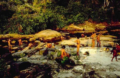 A volta da caçada na floresta amazônica ([[Povo:Araweté | Araweté]] – PA). Foto: Eduardo Viveiros de Castro, s/d.