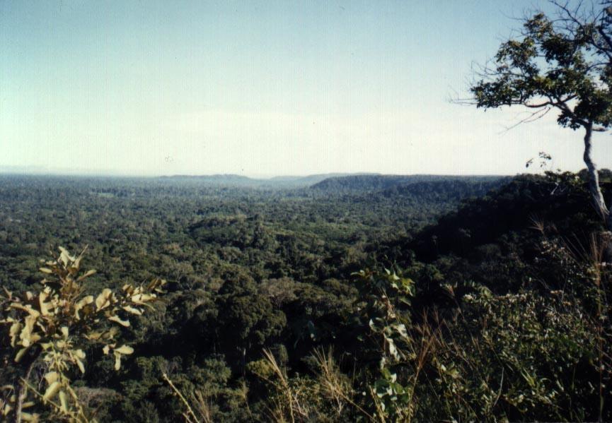 Vista da chapada onde fica localizada a aldeia atual dos Mamiandê. Foto: Joana Miller