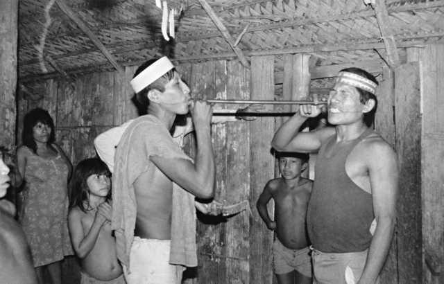Índios matsés praticando a respiração de rape, aldeia 31, Amazonas. Foto: Isaac Amorim Filho, 1985