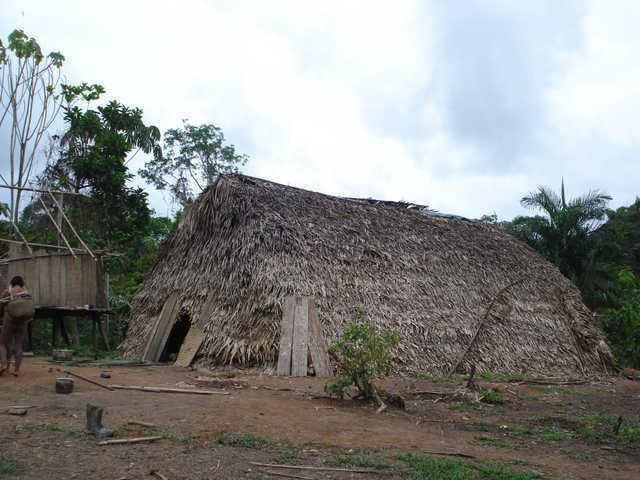 Morada Korubo na comunidade Mário Brasil Tapalaya, Terra Indígena Vale do Javari, Amazonas. Foto: Ananda Conde
