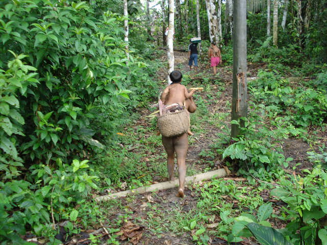 Índios Korubo, Terra Indígena Vale do Javari, Amazonas. Foto: Ananda Conde