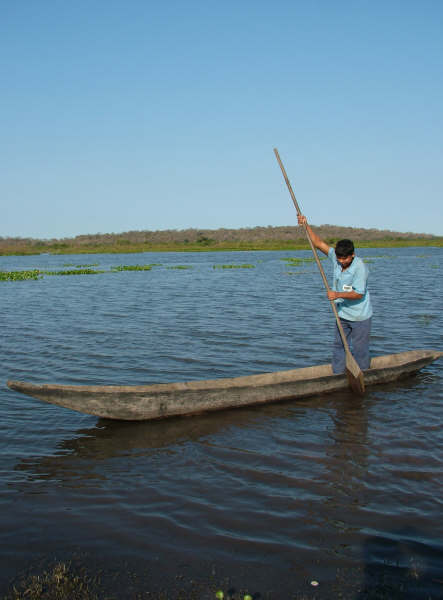 Young Guató man, crossing the Uberaba bay in a canoe. Photo: Suki Ozaki, 2006